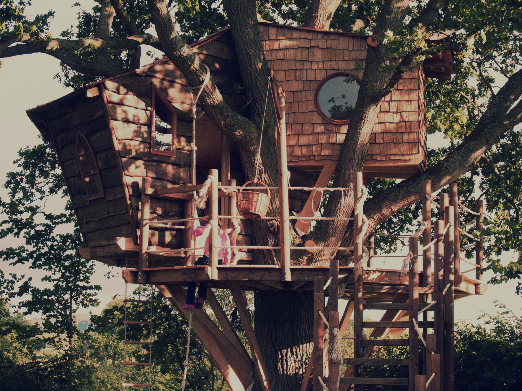 Inspirational Treehouse Design